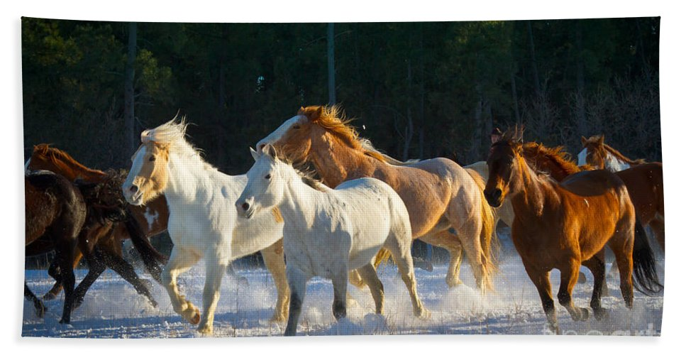 America Beach Towel featuring the photograph Wyoming Horses by Inge Johnsson