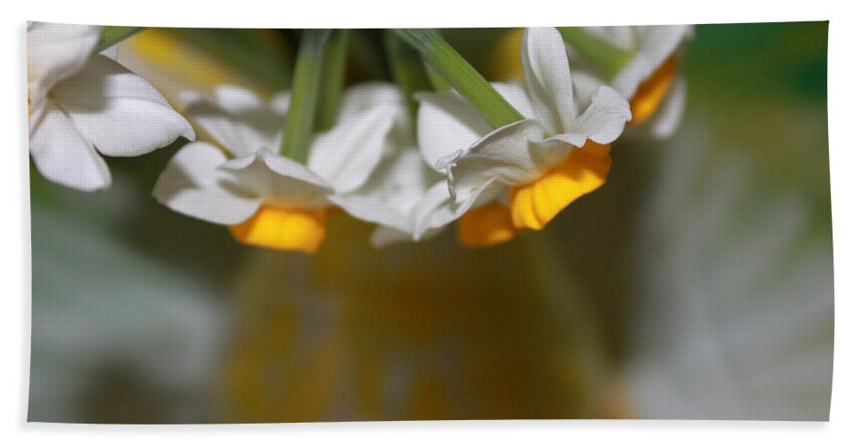 Spring Beach Towel featuring the photograph Yellow And White by Augusta Stylianou