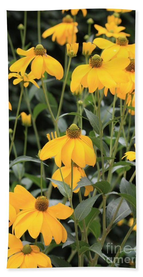Flower Beach Towel featuring the photograph Yellow Echinacea by Carol Groenen