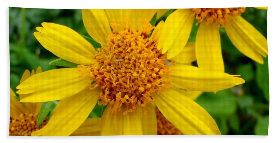 Yellow Beach Towel featuring the photograph Yellow Flash by Mary Deal