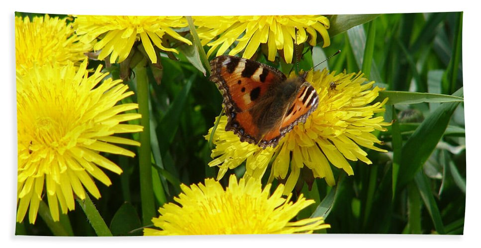 Butterfly Beach Towel featuring the photograph Yellow Flowers by Carol Lynch