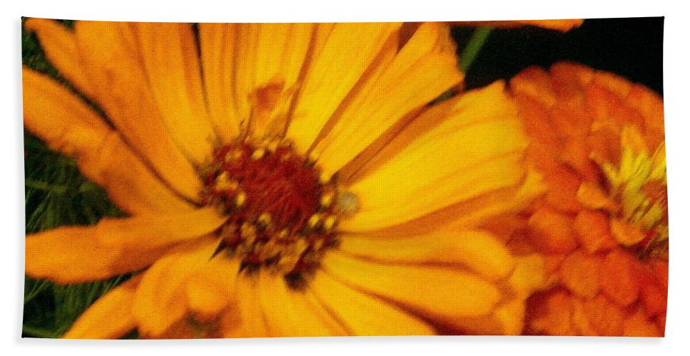 Yellow Beach Towel featuring the photograph Yellow Gold Flowers by Dale Jackson