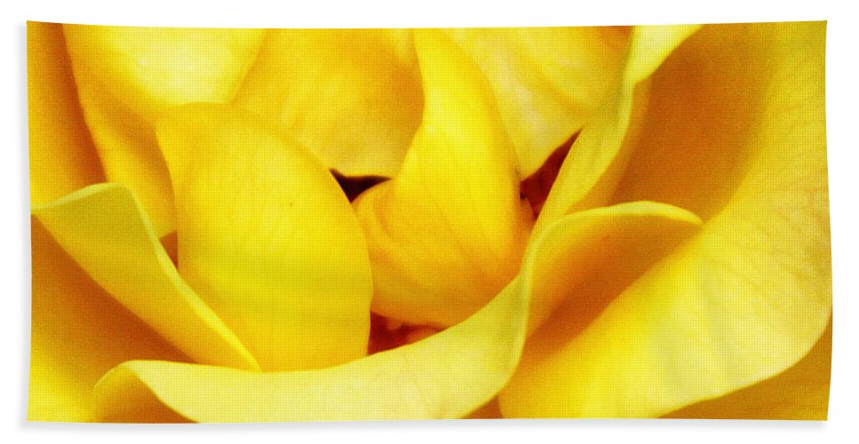 Featured Beach Towel featuring the photograph Yellow Sapphire Rose Palm Springs by William Dey