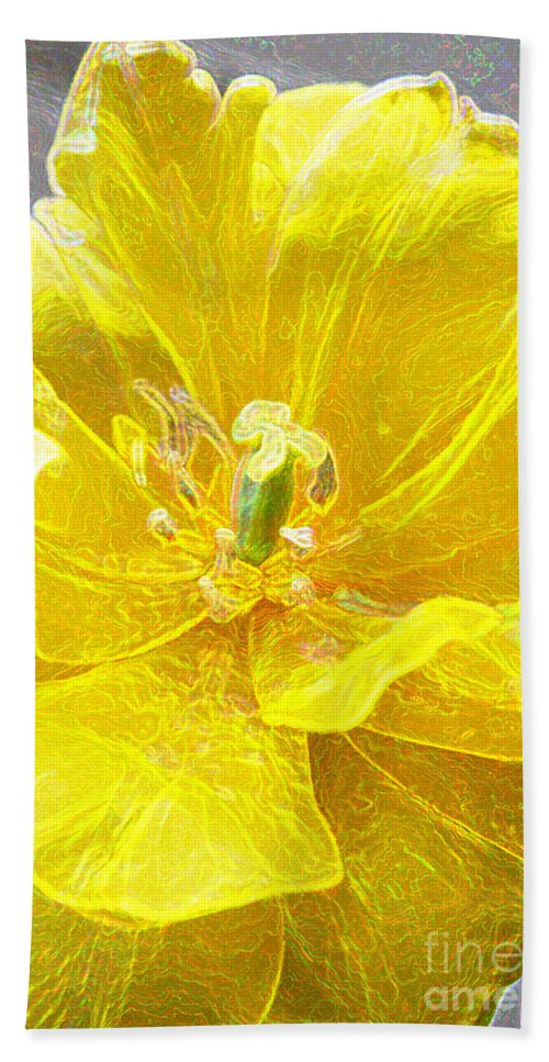 Tulip Beach Towel featuring the photograph Yellow Tenderness by Lali Kacharava
