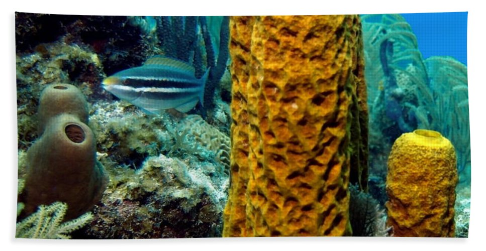 Nature Beach Towel featuring the photograph Yellow Tube Sponge by Amy McDaniel