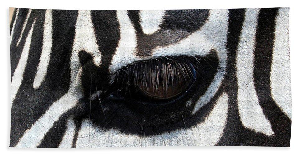 Zebra Beach Sheet featuring the photograph Zebra Eye by Linda Sannuti