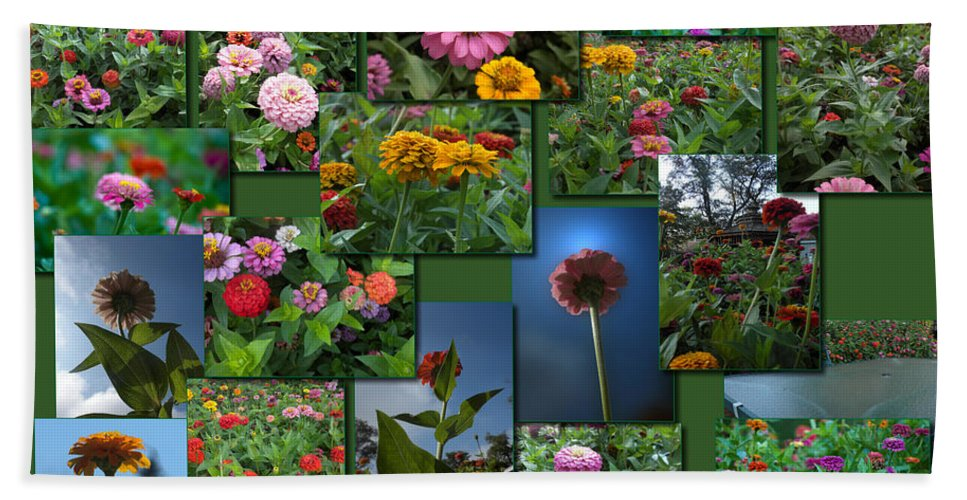 Zinnias Beach Towel featuring the photograph Zinnias Collage Square by Thomas Woolworth