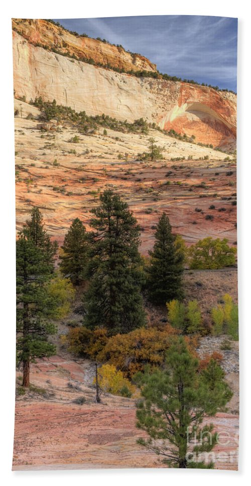 Hdr Beach Towel featuring the photograph East Zion Canyon Hdr by Sandra Bronstein