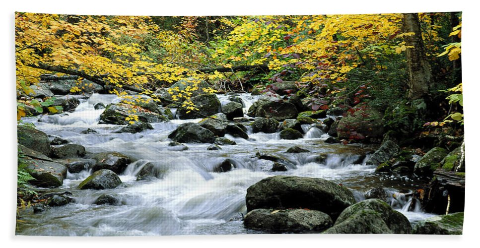 Autumn Beach Towel featuring the photograph Autumn Stream 3 by Mike Nellums
