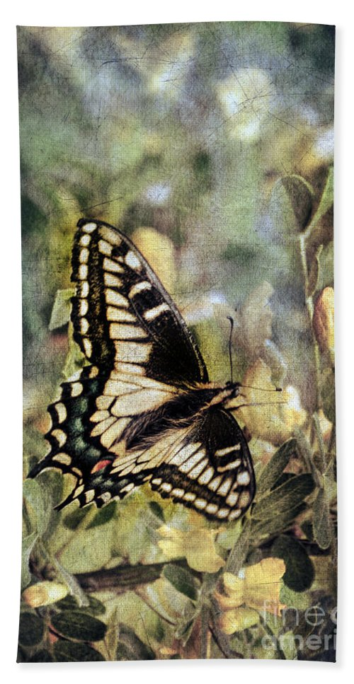 Butterfly Beach Towel featuring the photograph Butterfly On Yellow Flowers by Jill Battaglia