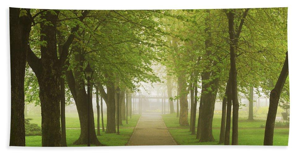 Fog Beach Towel featuring the photograph Foggy Park by Elena Elisseeva
