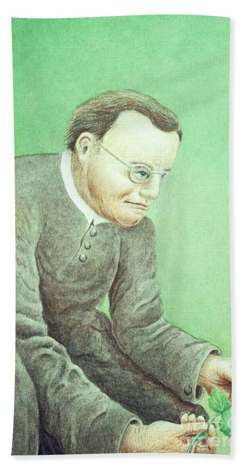 Science Beach Towel featuring the photograph Gregor Mendel, Father Of Genetics by Science Source