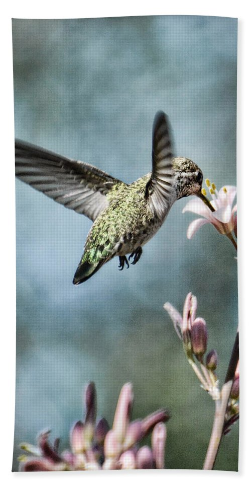 Annas Hummingbird Beach Towel featuring the photograph Morning Surprises by Saija Lehtonen