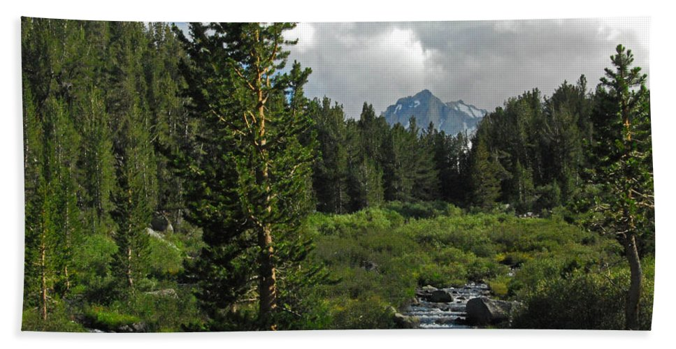 Rock Creek Beach Towel featuring the photograph Mosquito Flats by Lynn Bauer