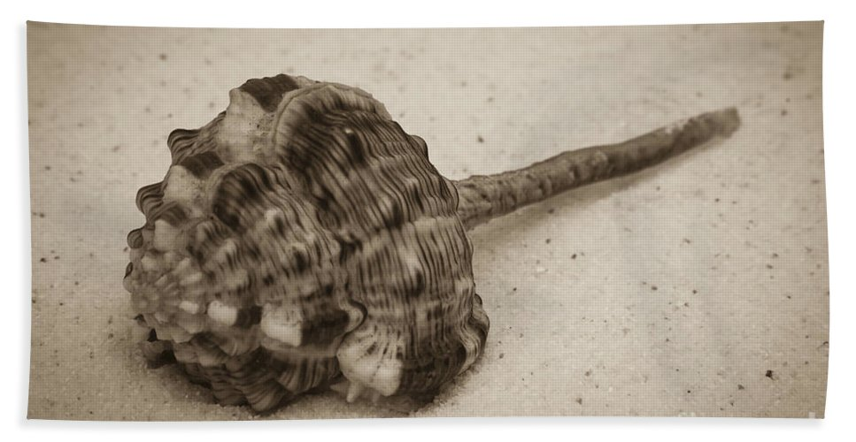 Sepia Beach Towel featuring the photograph Sepia Shell by Jim And Emily Bush