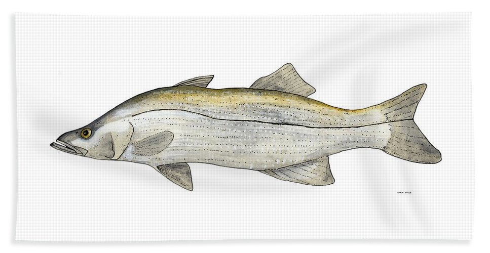 Fish Paintings Beach Towel featuring the painting Snook by Marla Saville