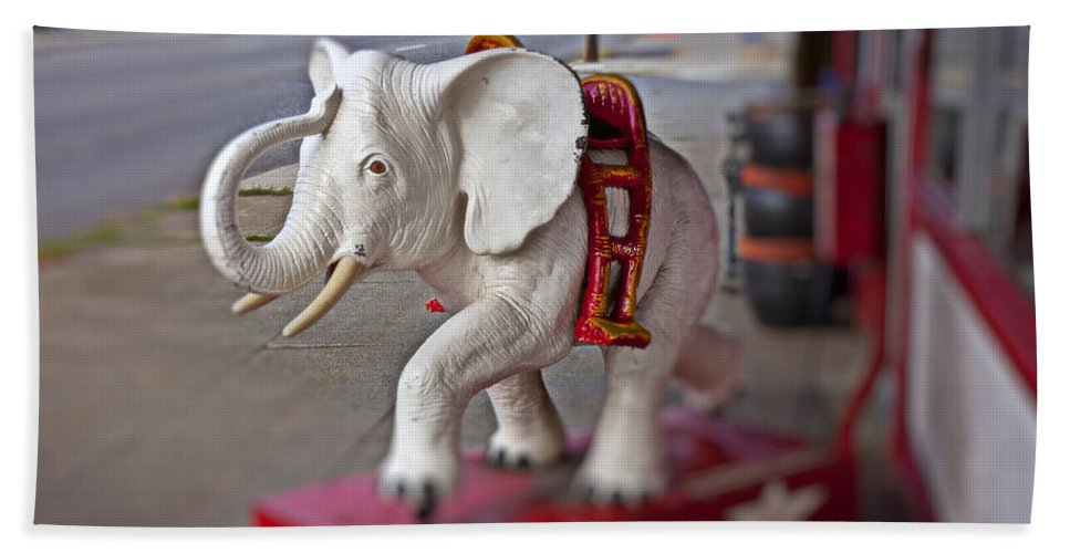 White Beach Towel featuring the photograph White Elephant by Garry Gay