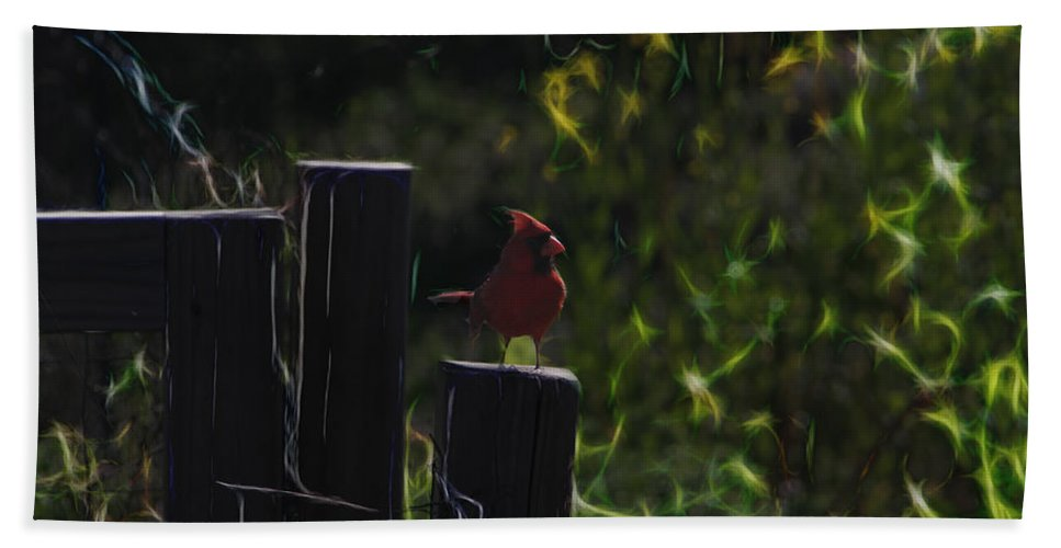 Tn Beach Towel featuring the photograph 1384 Posted by Ericamaxine Price
