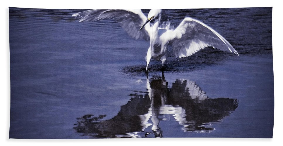 Snowy Egret Beach Towel featuring the photograph Reflections by Saija Lehtonen