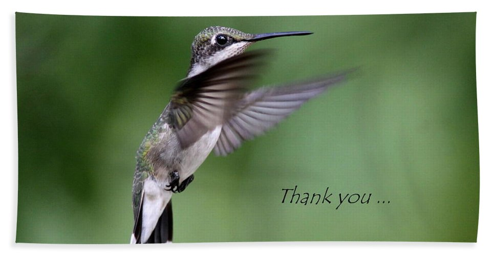 Thank You Beach Towel featuring the photograph Thank You Card by Travis Truelove