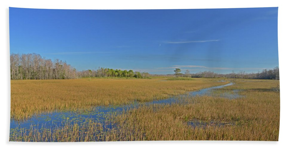 Beach Towel featuring the photograph 35- Grassy Waters by Joseph Keane