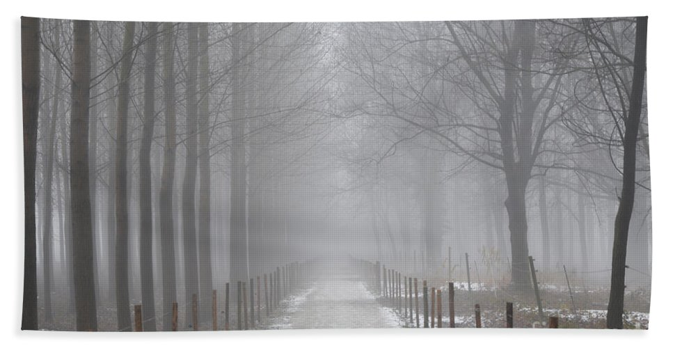 Road Beach Towel featuring the photograph Foggy Road by Mats Silvan