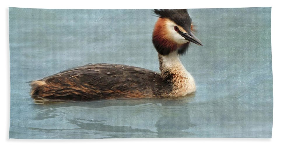 Great Beach Towel featuring the photograph Great Crested Grebe by Louise Heusinkveld