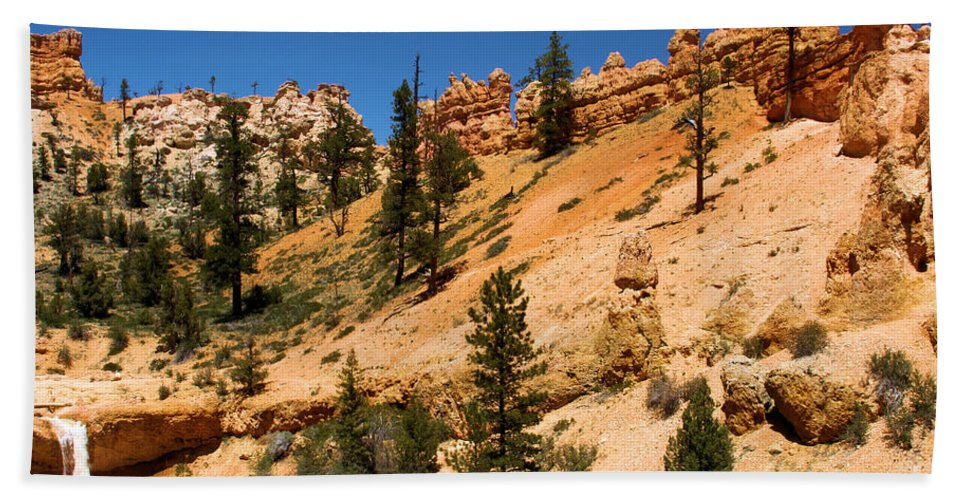Bryce Canyon National Park Beach Towel featuring the photograph A Dragon Over Water Canyon by Adam Jewell