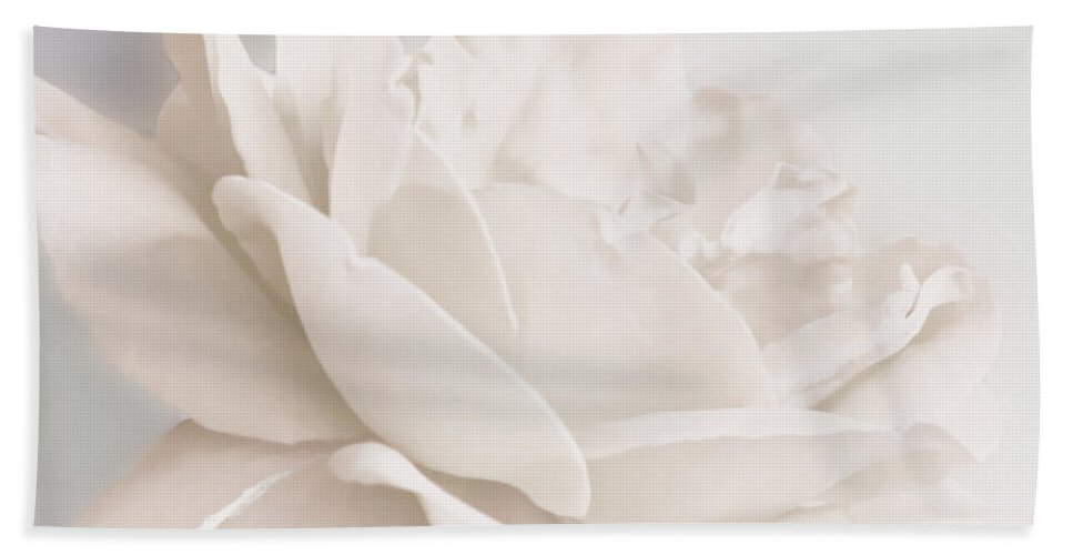 Flowers Beach Towel featuring the photograph A Hint Of Color by Debbie Portwood