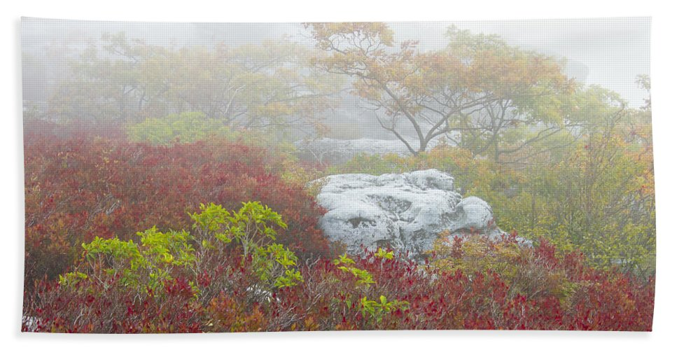 Fog Beach Towel featuring the photograph A Natural Garden At Dolly Sods Wilderness Area by Bill Swindaman