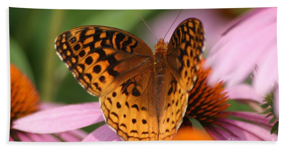 Butterfly Beach Towel featuring the photograph A Pretty Flying Flower by Living Color Photography Lorraine Lynch