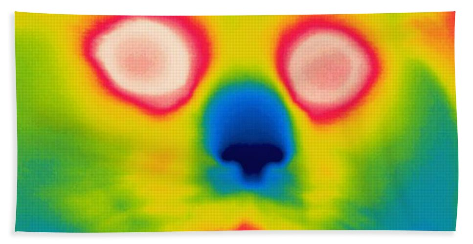 Thermogram Beach Towel featuring the photograph A Thermogram Of A Long Haired Cat by Ted Kinsman