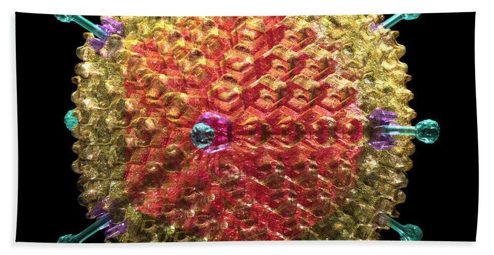 36 Beach Towel featuring the digital art Adenovirus 36 by Russell Kightley