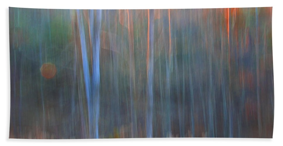 Forest Beach Towel featuring the photograph Afternoon Trees by Ron Jones