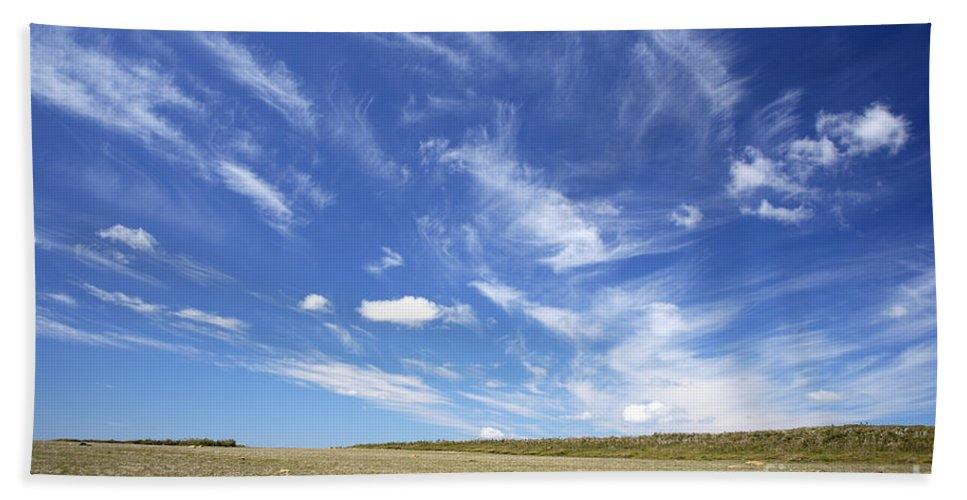Alpine Tundra Beach Towel featuring the photograph Alpine Tundra by Ted Kinsman