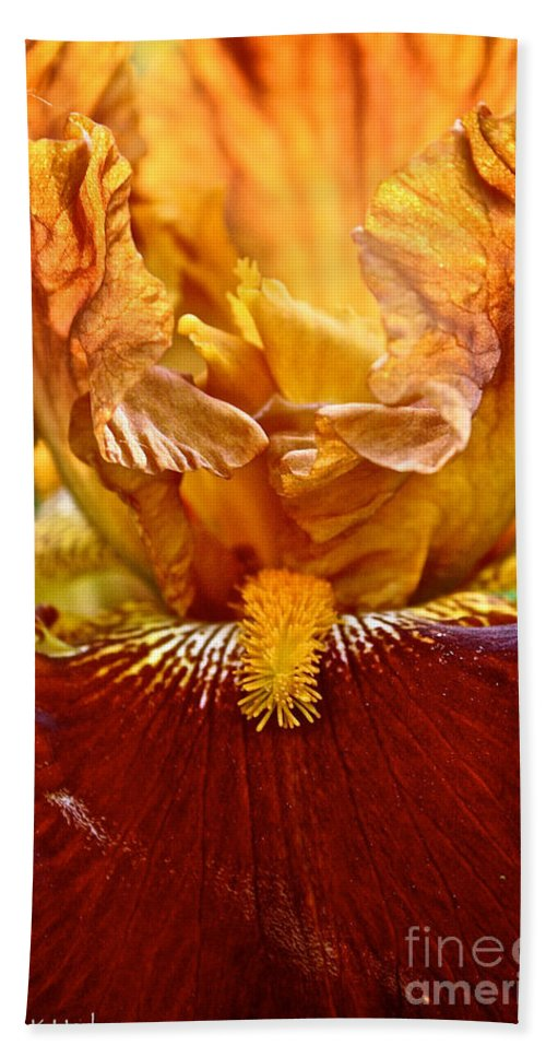 Plant Beach Towel featuring the photograph Amber Stripes by Susan Herber