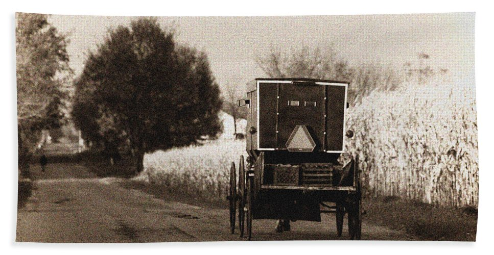 Amish Beach Towel featuring the photograph Amish Buggy And Wagon by David Arment