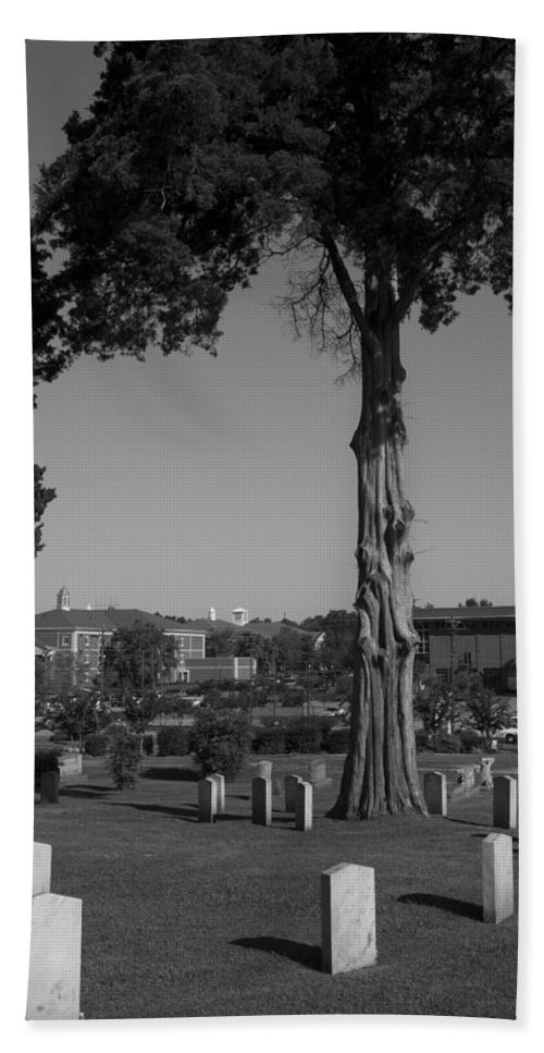 Thuja Plicata Beach Towel featuring the photograph Ancient Cedars And Tombstones by Kathy Clark