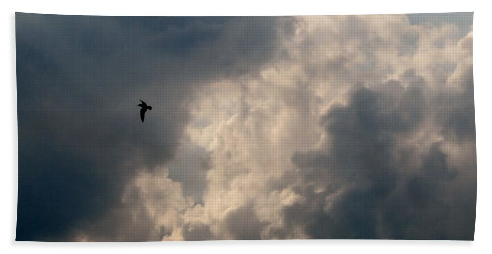 Angel Beach Towel featuring the photograph Angel Flight by Art Dingo