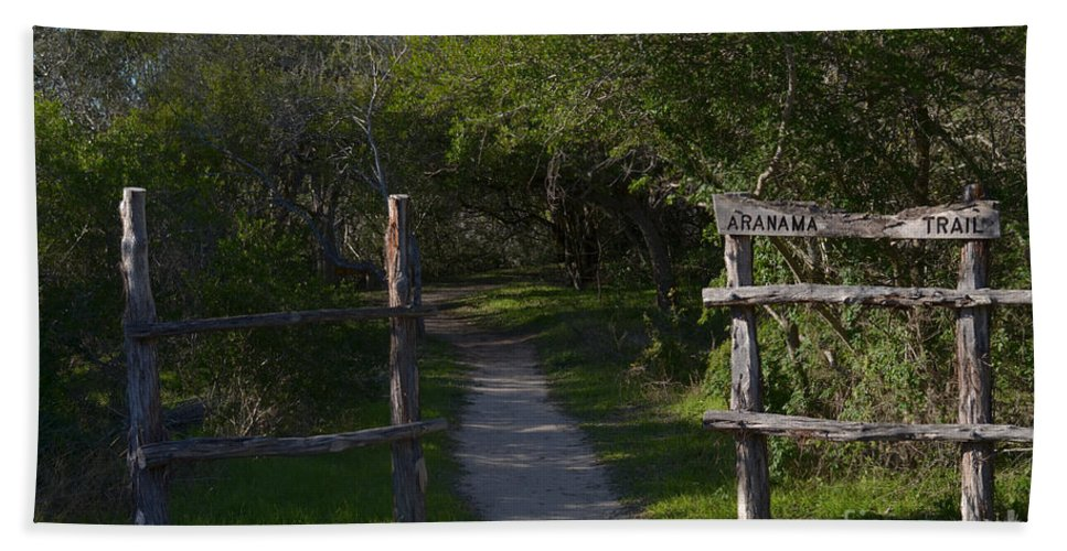 Pathway Beach Towel featuring the photograph Aranama Trail by Donna Brown