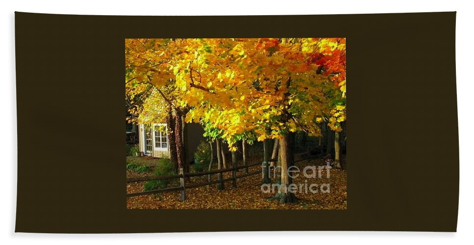 Autumn Beach Towel featuring the photograph Autumn At Bayberry Cottage by Nancy Patterson