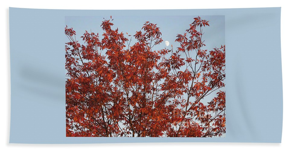 Red Brown Leaves Beach Towel featuring the photograph Autumn Moon by Sonali Gangane