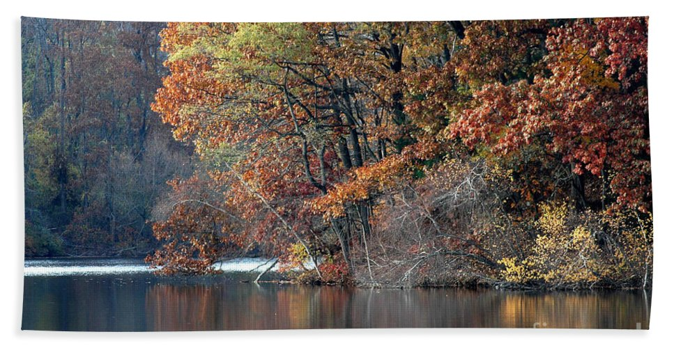 Autumn Beach Towel featuring the photograph Autumn Pond Reflections by Mike Nellums