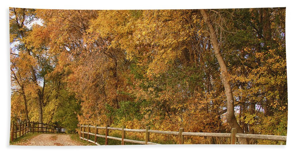 Red Beach Towel featuring the photograph Autumn Road To The Ranch by James BO Insogna