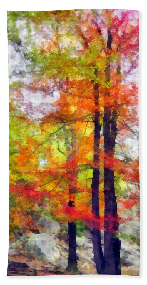 Tree Beach Towel featuring the photograph Autumnal Rainbow by Angelina Tamez