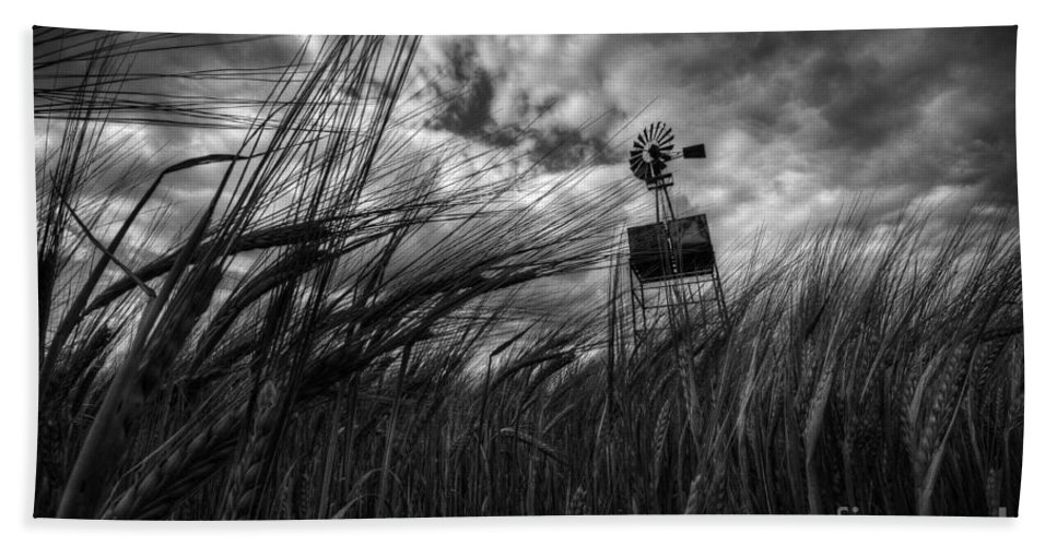 Barley Beach Towel featuring the photograph Barley And The Pump Mono by Rob Hawkins