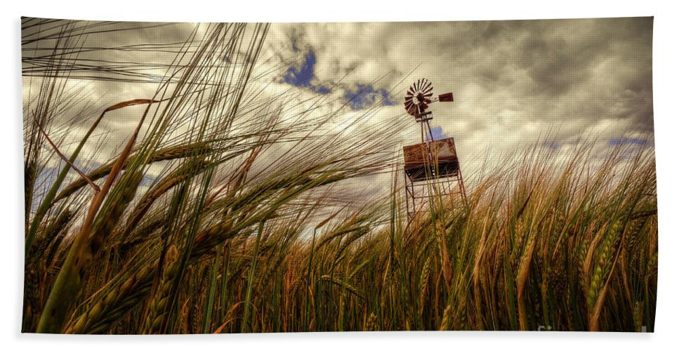 Barley Beach Towel featuring the photograph Barley And The Pump by Rob Hawkins