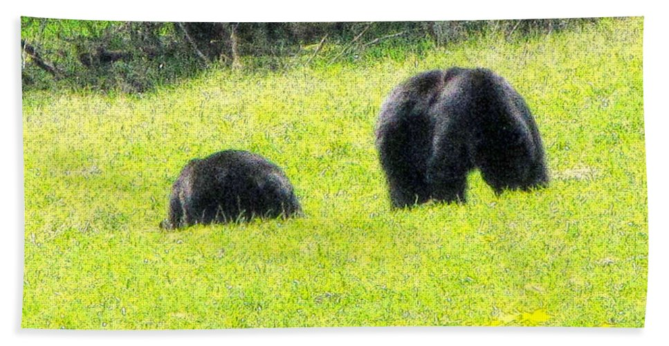 Bears Beach Towel featuring the photograph Bears In A Peaceful Meadow1 by Marie Jamieson