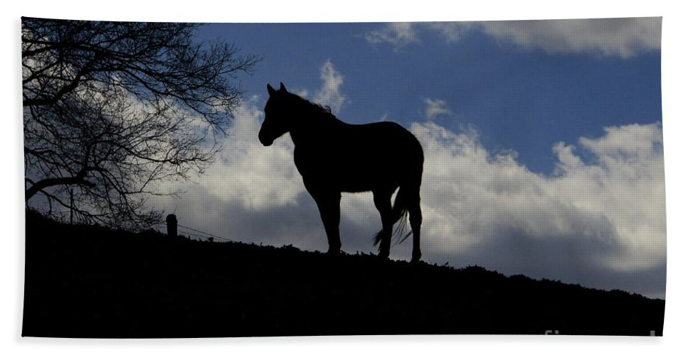 Horse Art Beach Towel featuring the photograph Beauty In The Wind by Benanne Stiens