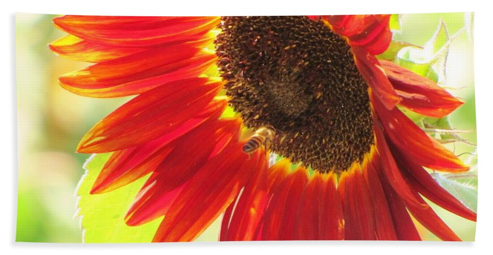 Sunflowers Beach Towel featuring the photograph Bee On A Sunflower by Michelle Cassella